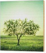 Lone Mesquite Wood Print