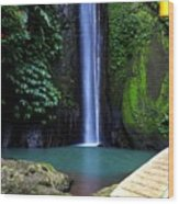 Lonely waterfall Wood Print