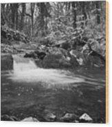 Ludon Valley Pool Wood Print