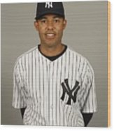 Mariano Rivera Wood Print