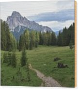 Meadow in the dolomites Wood Print