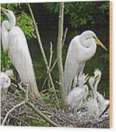 Mom n Pop n Chicks Wood Print