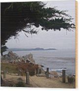 Near Carmel Wood Print