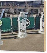 New York Jets On Ice  Wood Print