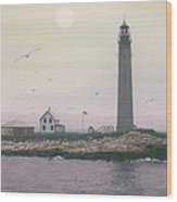 Petit Manan Lighthouse Wood Print