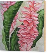 Pink Ginger Lilies Wood Print