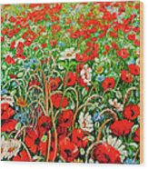 Poppies In The Wild Wood Print