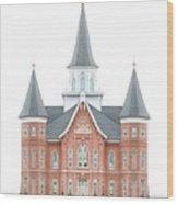 Provo City Center Temple - Celestial Series Wood Print