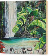 Rainforest Falls Trinidad.. Wood Print