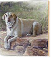 Restrained Energy- Yellow Labrador Retriever Portrait Wood Print