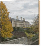 River Cam in Cambridge England city scene Wood Print