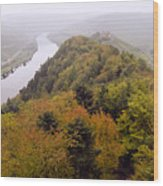 River Moselle in Autumn Wood Print