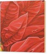 Scarlet Nights Wood Print