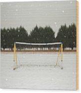 Soccer net in winter Wood Print