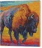 Spirit Of The Prairie Wood Print