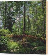 Sunlit Garden Wood Print