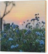 Sunset Behind Flowers Wood Print