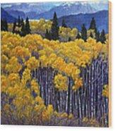 Tall Aspens Wood Print