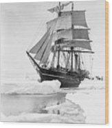 Terra Nova in Antarctic pack ice, 1910 Wood Print