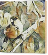 The Inquisitive Sparrow Wood Print