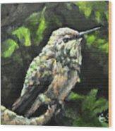 This Hummingbird Loves my Green Tree Maple Wood Print