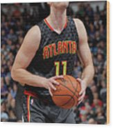 Tiago Splitter Wood Print