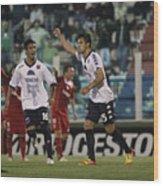 Tigre v Argentinos Juniors - Copa Sudamericana 2012 Wood Print