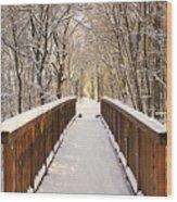 Towards The Winter Wonderland Wood Print