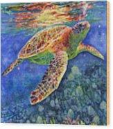 Turtle Reflections Wood Print