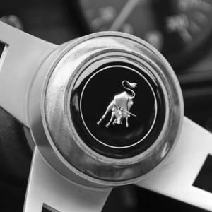 Lamborghini Steering Wheel Emblem Photograph By Jill Reger