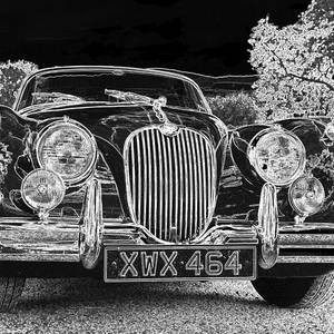 6dc13254c63c Black And White Classic Jaguar With Colour Photograph by Rosemary ...