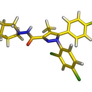 Rimonabant Obesity Drug Molecule Photograph by Molekuul