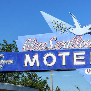 blue swallow sign photograph by chris augliera pixels