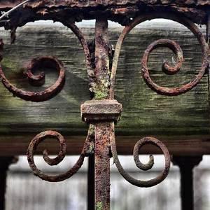 Charleston Sc Iron Works 2 Photograph By Yvette Wilson