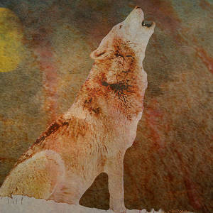 Wolf In The Woods - Painting Painting by Ericamaxine Price