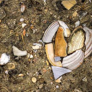 Lonely Beach Shacks Photograph By Evelina Kremsdorf