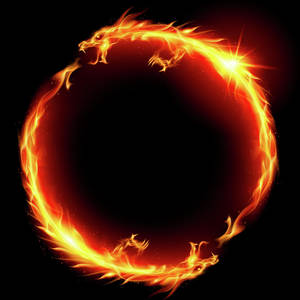 Ring Of Fire Of The Dragon Illustration On White Background Vector Digital Art By Geek Fineart