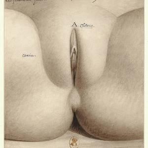 Teen nudist pussy