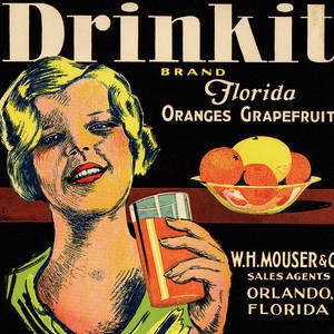 Ocala Florida Eureka Orange /& Grapefruit Citrus Fruit Crate Label Art Print