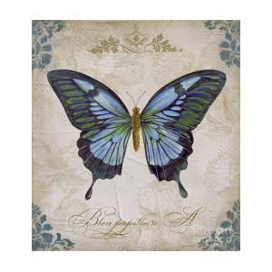 Bleu Papillon A