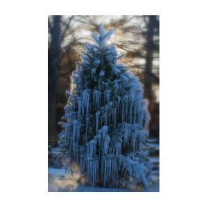 So Long Christmas Tree 1 by David Williams