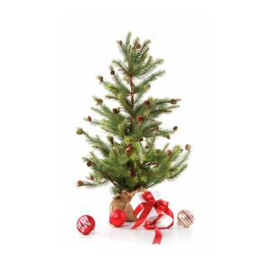 Little Christmas Tree With Red Ribboned Gifts On White Photograph By