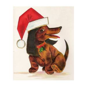 05e68b89e7301 Christmas Illustration 745 - Vintage Christmas Cards - Dog With Christmas  Hat by TUSCAN Afternoon