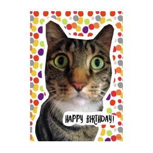happy birthday cat art by linda woods digital art by linda woods