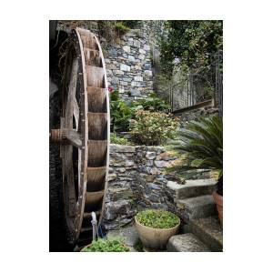 Pictueresque Waterwheel In Cinqueterre Garden Photograph David Smith Jpg  300x300 Cinqueterre Garden Water Picturesque Waterwheel