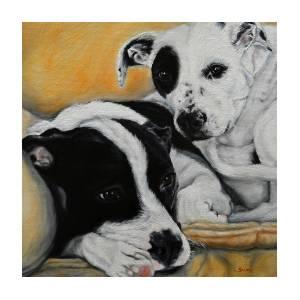 pitbull dalmatian mix cuddling painting by sun sohovich