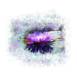 Purple Lotus Mixed Media By Chocolate Pudding