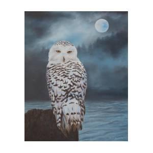 Snowy Owl In Moonlight on barn owl house plans, screech owl house plans, horned owl house plans, barred owl house plans,