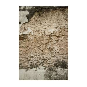 Vertical View Of Colonial Stucco Wall In Asia With Deep Fissures by Jason  Rosette
