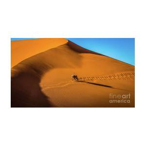 Oryx Crossing Big Daddy Dune Sossusvlei Namibia
